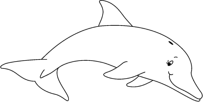 Rayito de Colores: Dibujos de Delfines