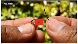 Tải nhanh video youtube khi load trang cho blog/web