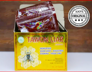 Jual jamu tawon liar di sulawesi, makasar, ambon, maluku, palu, kendari, gorontalo, manado, bitung, palopo, bau-bau, pare-pare, kotamubagu, tomohon, minahasa