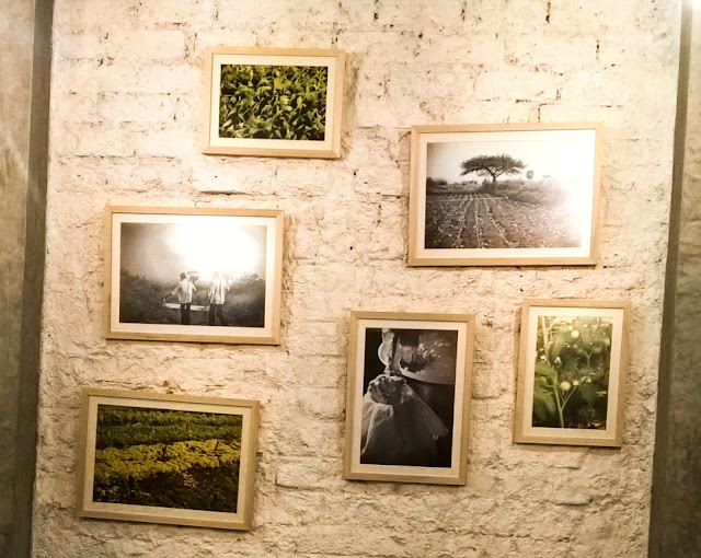 Arts Decor Interiors painting photographs