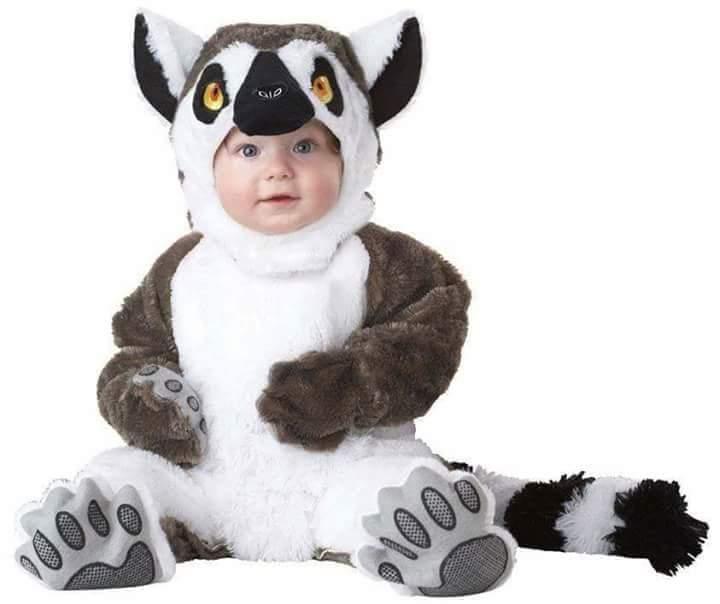 11 kostum baby yang sangat comel!