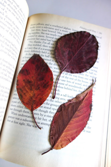 autumn leaves, leaves, leaf embroidery, nature crafts, sewing crafts, old book, DMC thread, needle and thread, blah to TADA