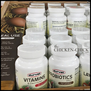 Offer chicks probiotics in their water to promote competitive exclusion (the good guys beat out the bad guys inside the gut)