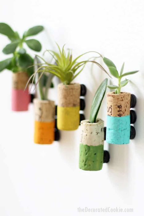 Succulent recycled cork magnets can help even those who can't normally grow a plant