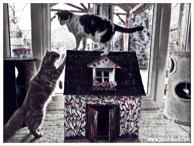 The BBHQ Building Inspectors ©BionicBasil® Caturday Art Hop