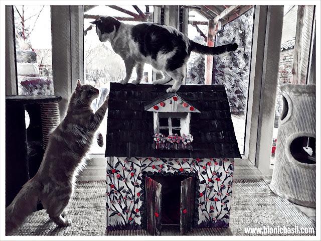 The BBHQ Building Inspectors ©BionicBasil® Caturday Art Hop