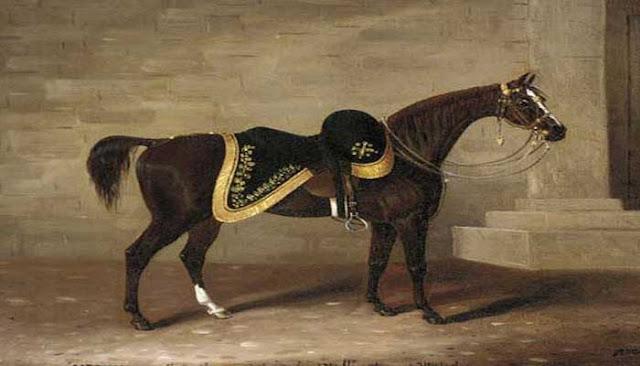 Equus Caballus atau Equus Ferus Caballus 10 KUDA PERANG PALING TERKENAL DALAM SEJARAH