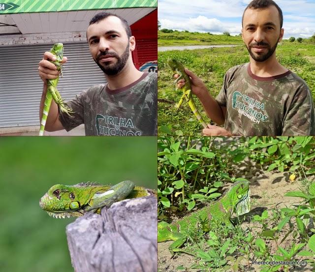 Iguana é resgatada em via pública e devolvida à natureza, em Santa Cruz do Capibaribe