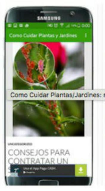 App Jardinería APLICACIÓN MOVIL PARA EL CUIDADO DEL JARDÍN
