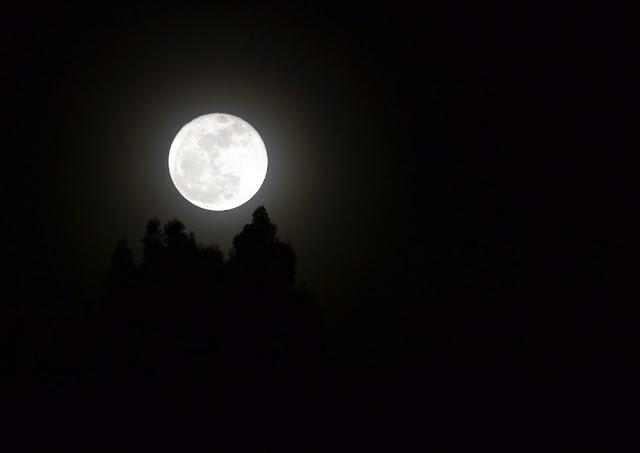 Kaulah Pelita Bulan yang Tak Mungkin Pernah Menurun