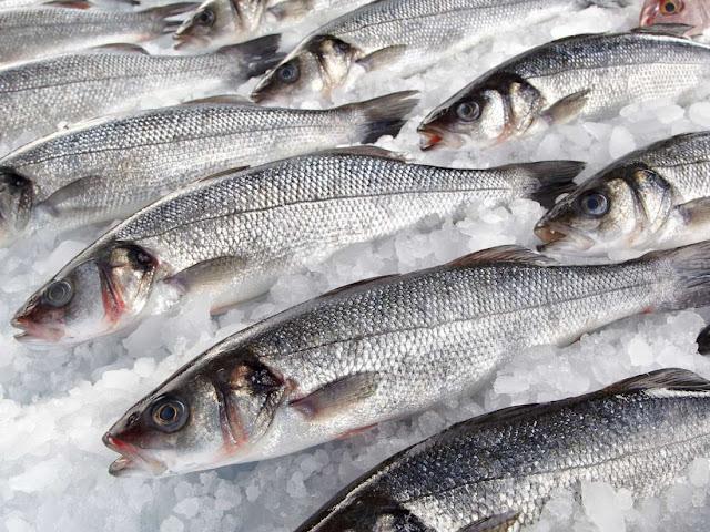تفسير حلم السمك للحامل