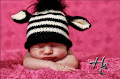 Knit a Zebra Hat $5.00