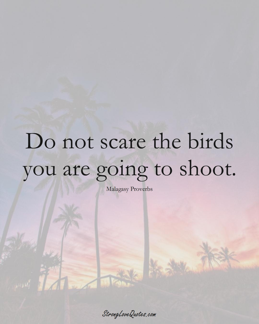 Do not scare the birds you are going to shoot. (Malagasy Sayings);  #AfricanSayings