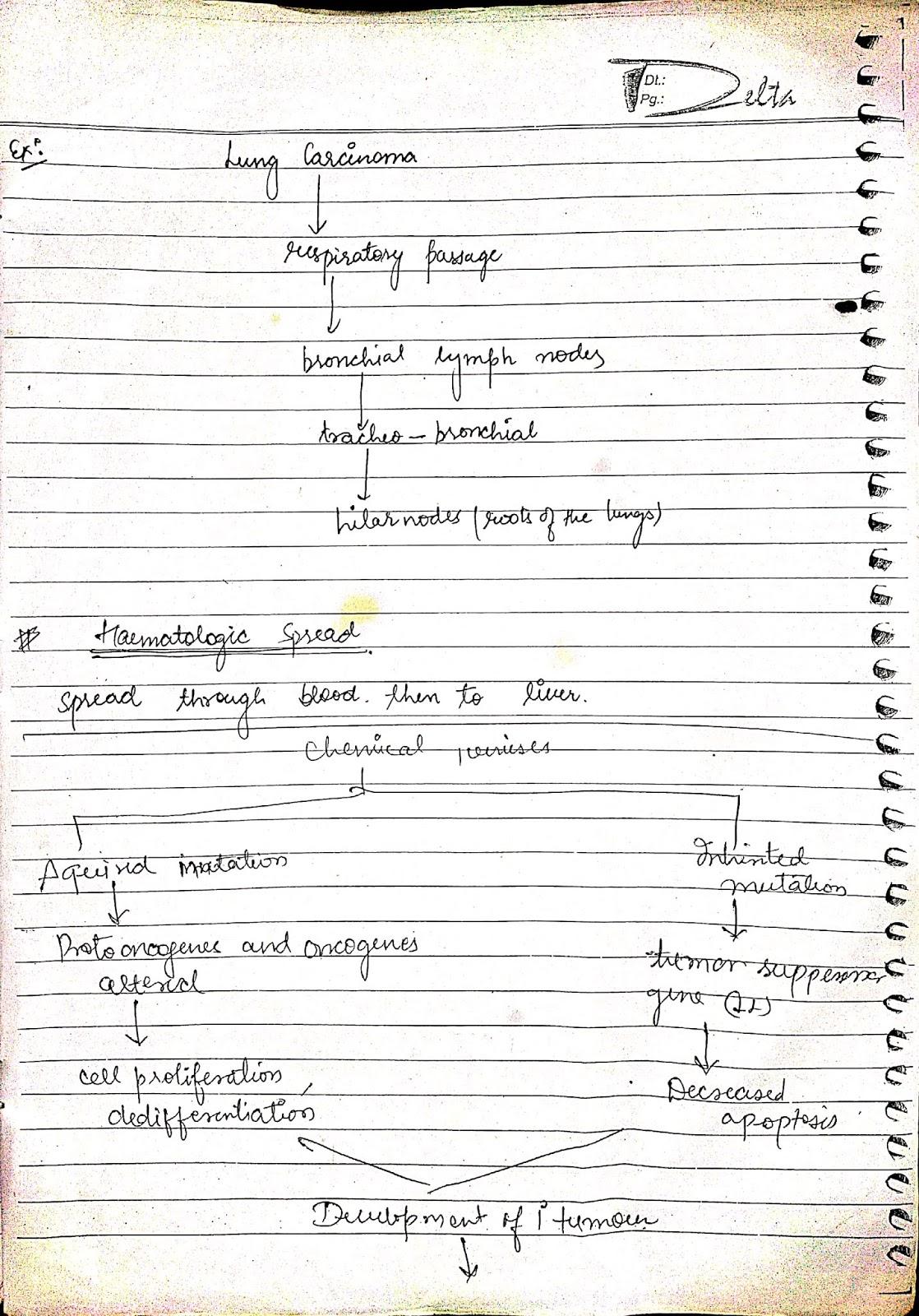 pathophysiology - cancer