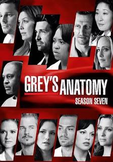 Anatomia de Grey Temporada 7 audio latino