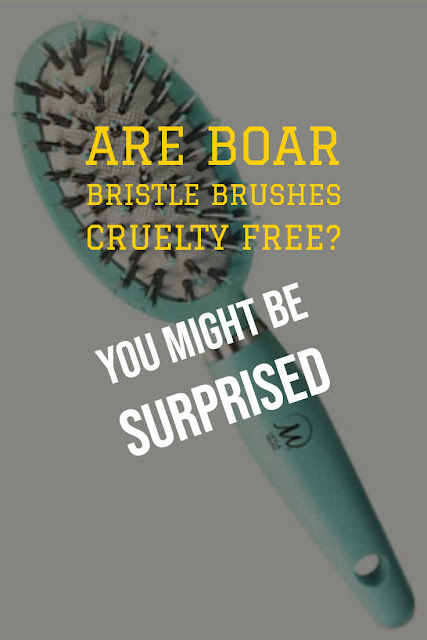 Boar brushes