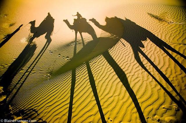 http://1.bp.blogspot.com/-iSNXtOfJbLQ/U7biyaGhqbI/AAAAAAAAAXs/6ug6Wo9U7EE/s1600/MG_8700_camel_shadows.jpg