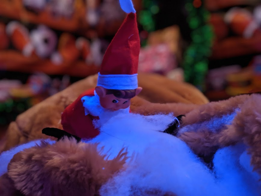 Christmas & Santa at Whitehouse Farm - A Review  - elf on the shelf