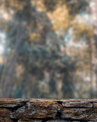 Blur Background With Wall Free Stock Image