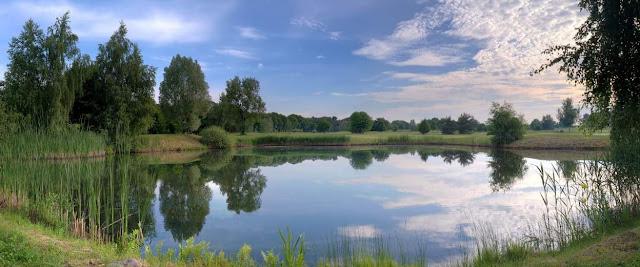 Lago y ecosistemas acuativos