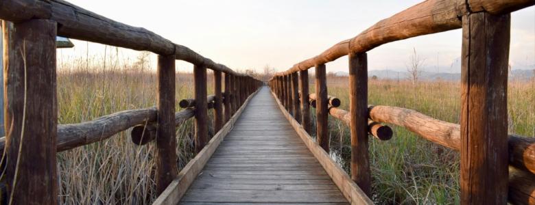 https://www.kumpulan.my.id/2019/03/cerpen-mentari-jembatan-kayu-karya-elis.html