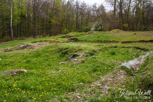Fundametreste Villa Rustica Binger Wald