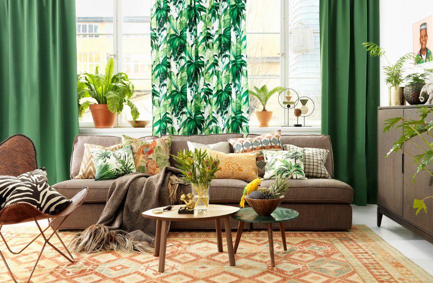 biljke-cvijeće-uredi_dom-interijer