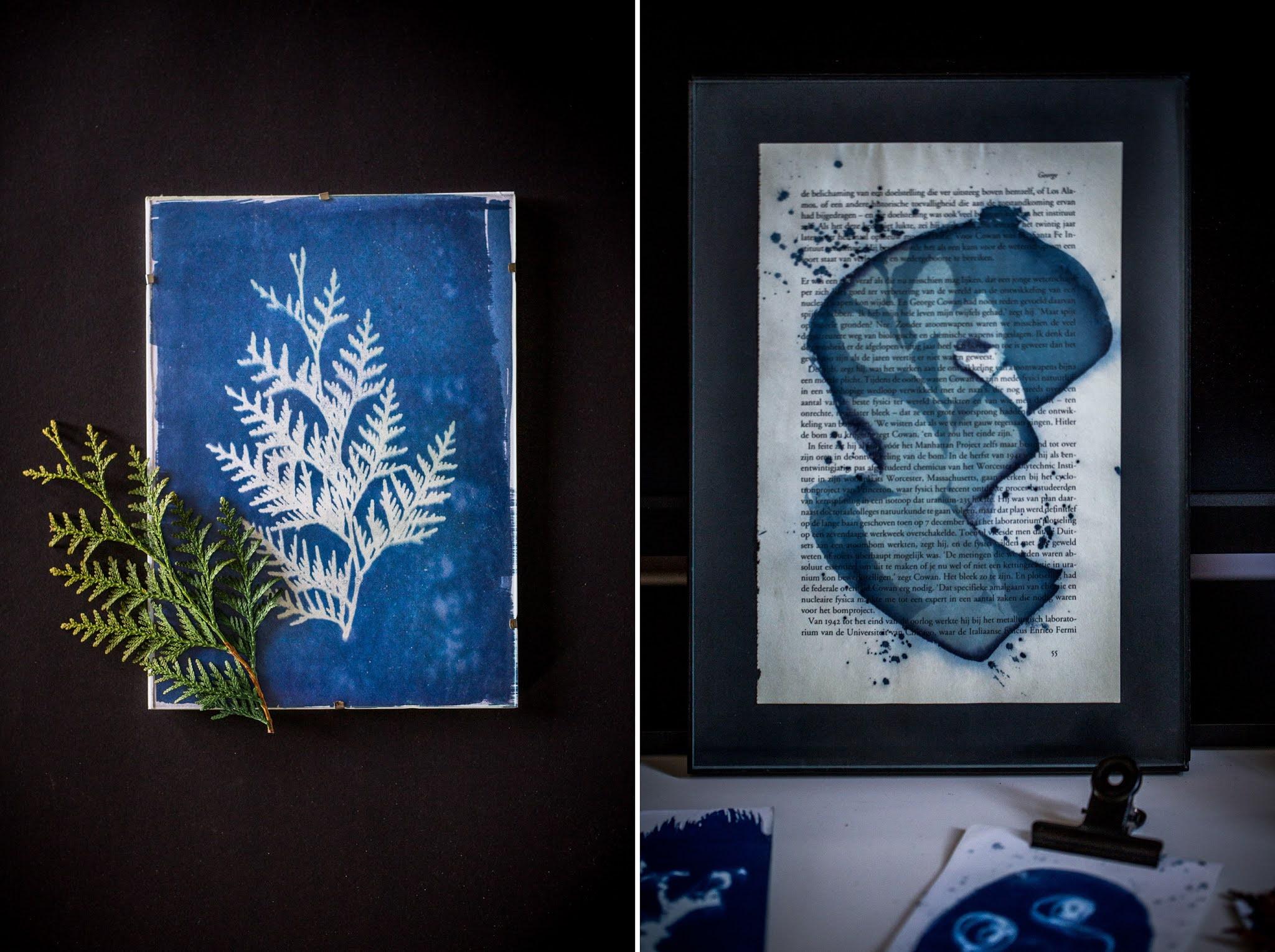 Cyanotype или Магията на Синият Принт