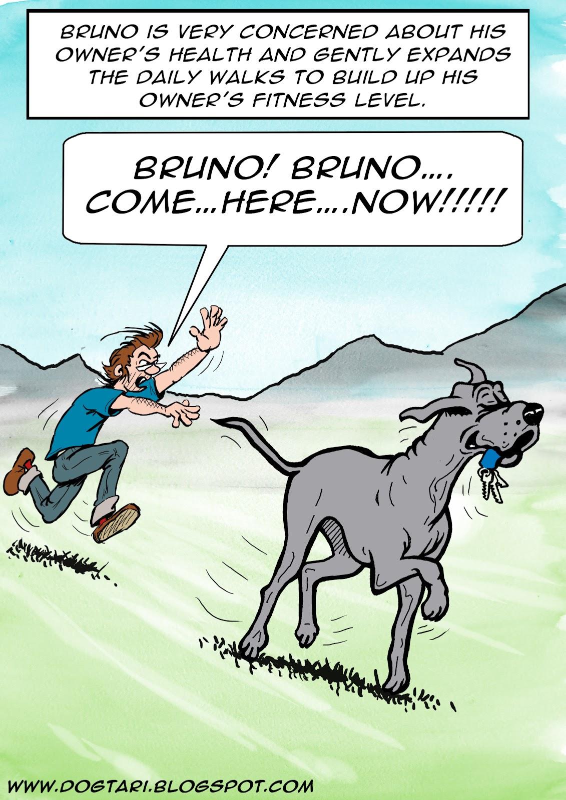 Dog Training Cartoon