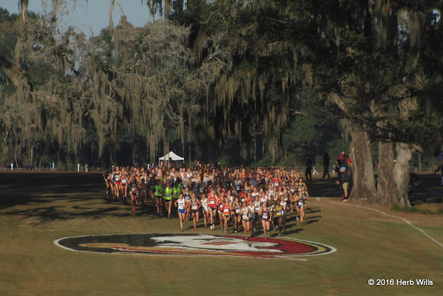 NCAA-D1 2016 South Region Women's Cross Country Championship