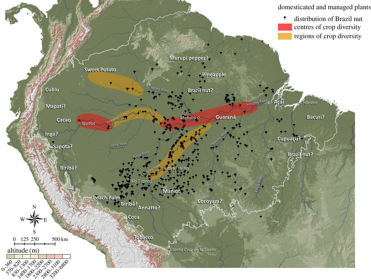 Ancient Amazon Rainforest Was Once Used For Agriculture The - Map of south america amazon river