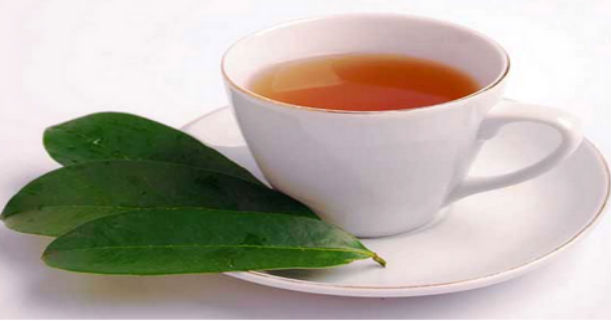Cara Mengolah Daun Sirsak Menjadi Minuman Herbal