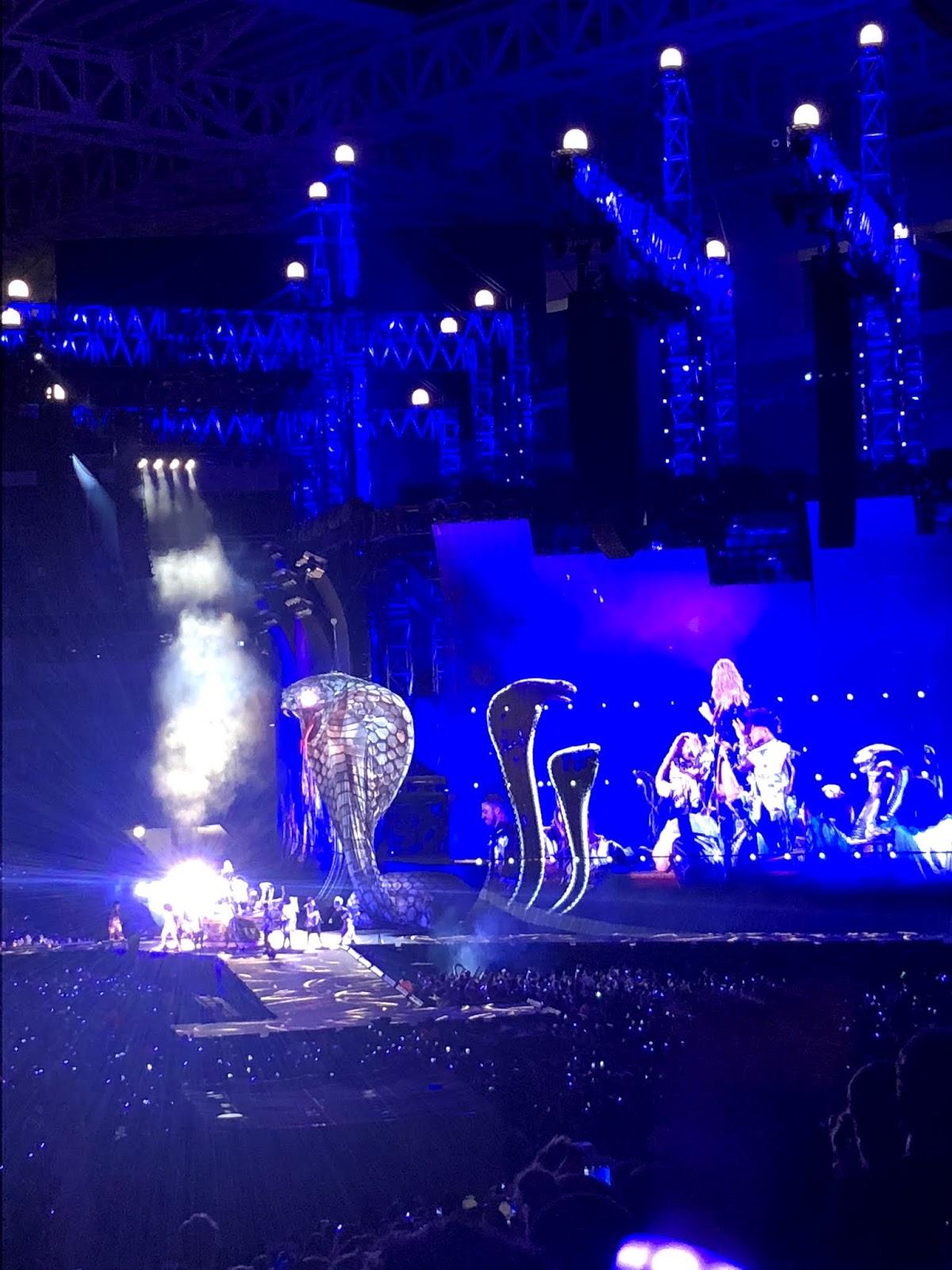 Stephanie Kamp Blog: Netflix's Taylor swift Reputation Stadium Tour