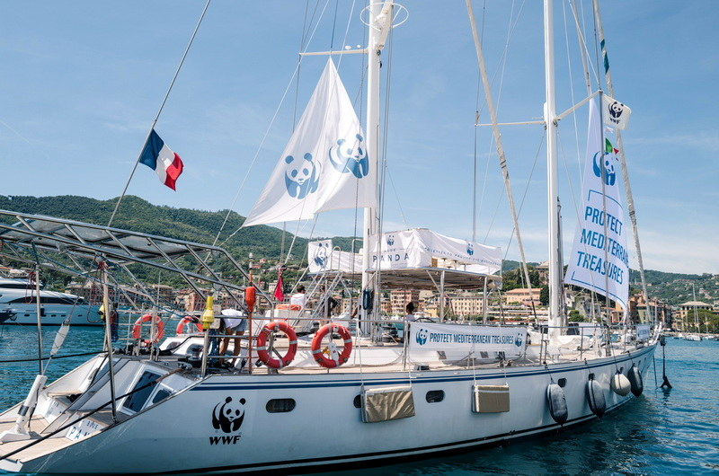 Το ιστιοπλοϊκό του WWF ταξιδεύει στη Μεσόγειο αναδεικνύοντας την ανάγκη προστασίας της