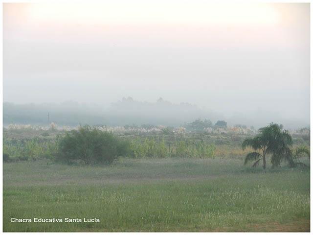 Paisaje de la chacra en la mañana-Chacra Educativa Santa Lucía