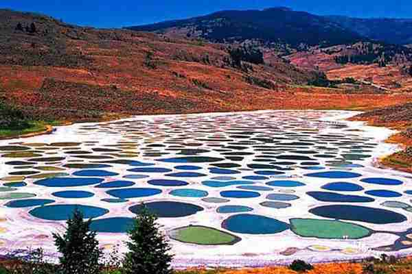 Keajaiban Spotted Lake