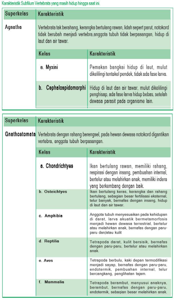 karakteristik anggota Subfilum Vertebrata