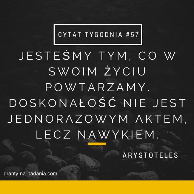 Jesteśmy tym, co w swoim życiu powtarzamy. Doskonałość nie jest jednorazowym aktem, lecz nawykiem. - Arystoteles