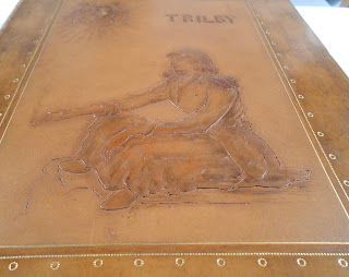 Cover to 1895 Trilby
