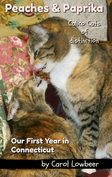 Feline Fiction on Fridays #135 ©BionicBasil® Peaches and Paprika Our First Year in Connecticut Amber's Purrsonal Copy