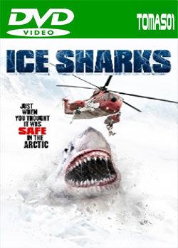 Tiburones de hielo (2016) DVDRip