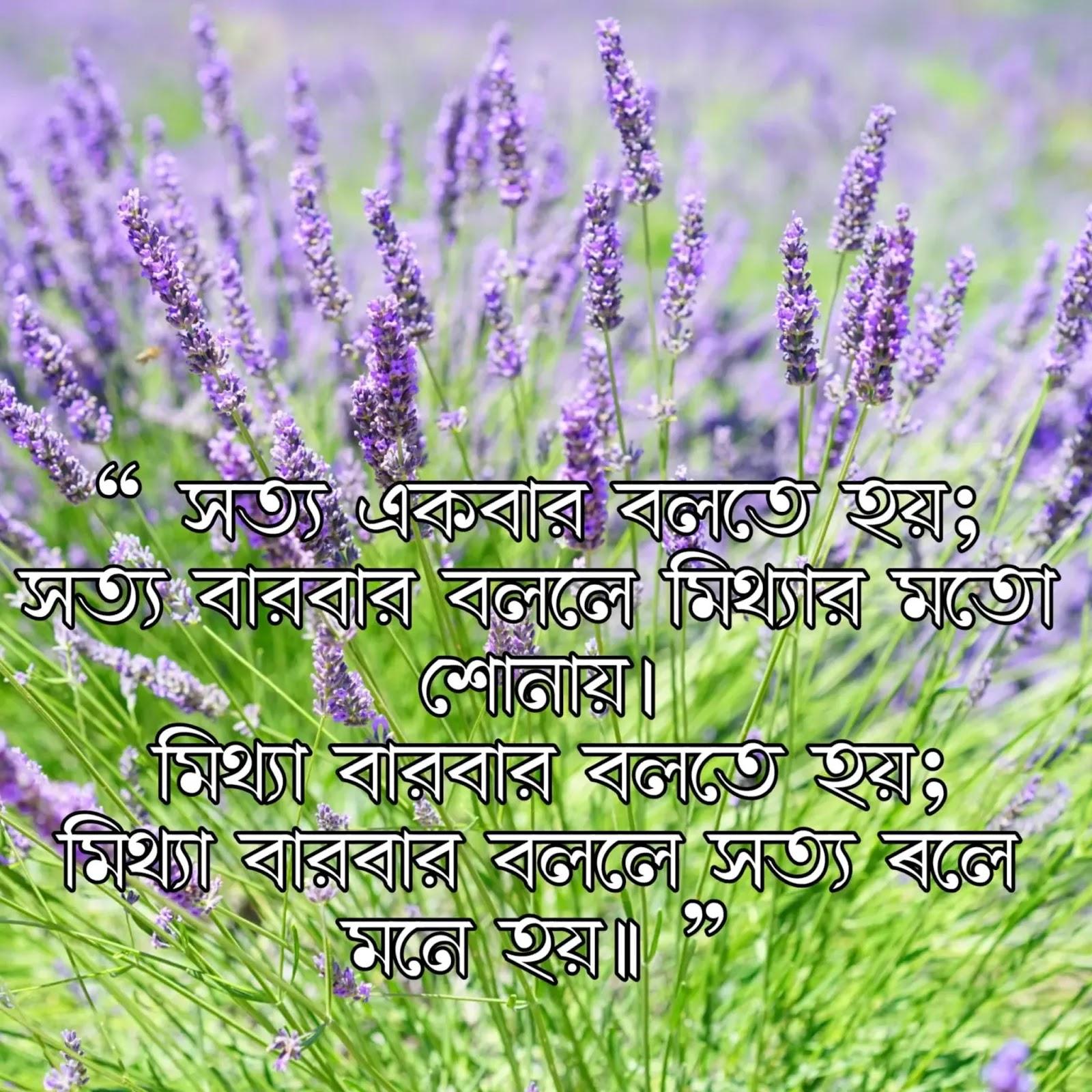 positive Bengali quotes