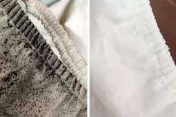 Cara Mudah Menghilangkan Noda Jamur pada Pakaian