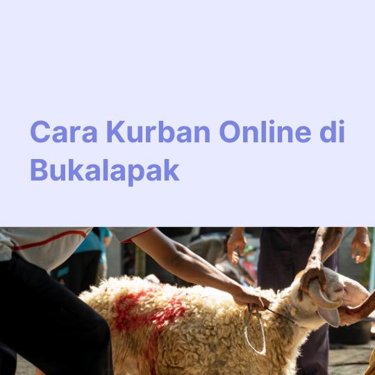 Cara Kurban Online di Bukalapak