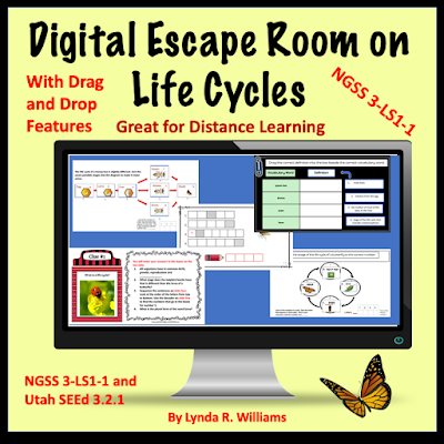 Life Cycle escape room