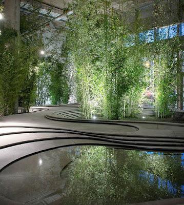 Растения в интерьер живая стена
