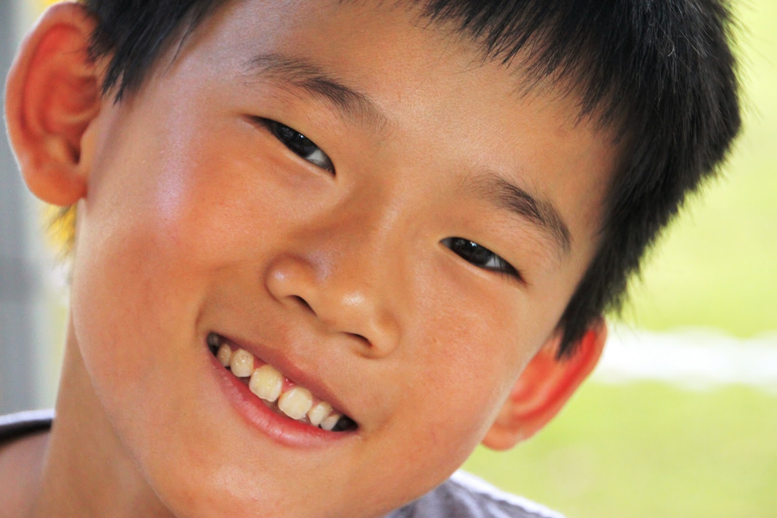 Katherine Heigl Adoption Special Needs