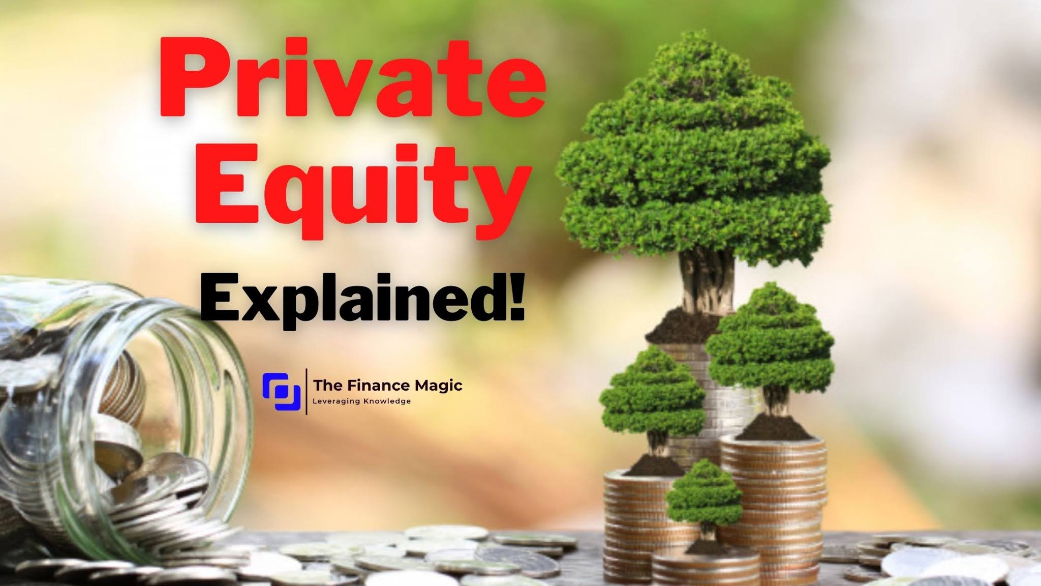 Private Equity - Explained