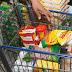 Custo médio da cesta básica é de R$ 219,17 em Mossoró, aponta pesquisa SEDAT