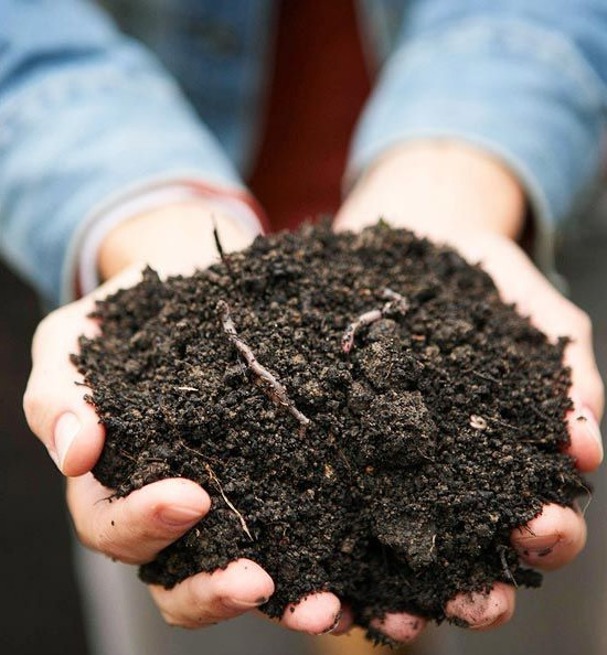 Pengertian pupuk kompos
